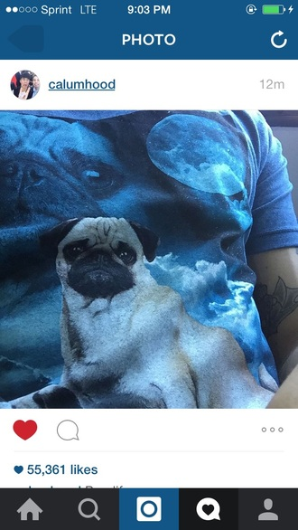 t-shirt blue dog