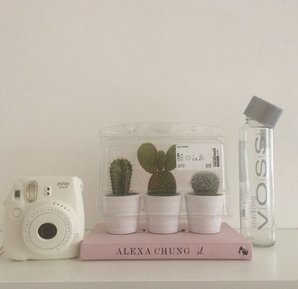 home accessory cactus water bottle