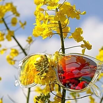 sunglasses sili sunglasses sportswear winter sports summer sports apparel trendy active wear