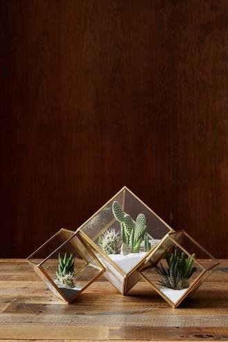 home accessory terrarium geometric gold home decor plants
