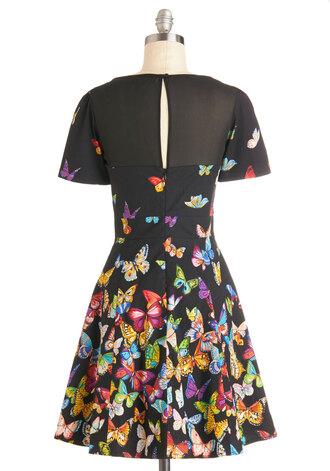 dress flutter to the fete dress print dress butterfly