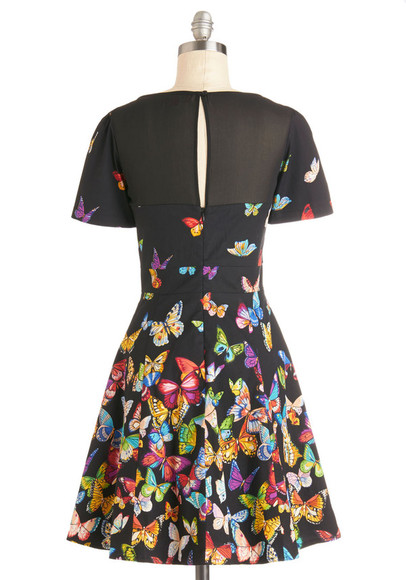 dress print dress flutter to the fete dress butterflies