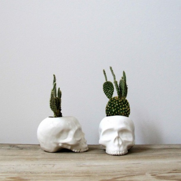 ... skull, flower pot, skull flower pot, home decor, cactus - Wheretoget
