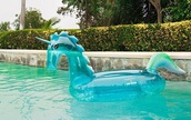home accessory,unicorn,pool,pool float,floaty