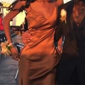 dress,silk dress