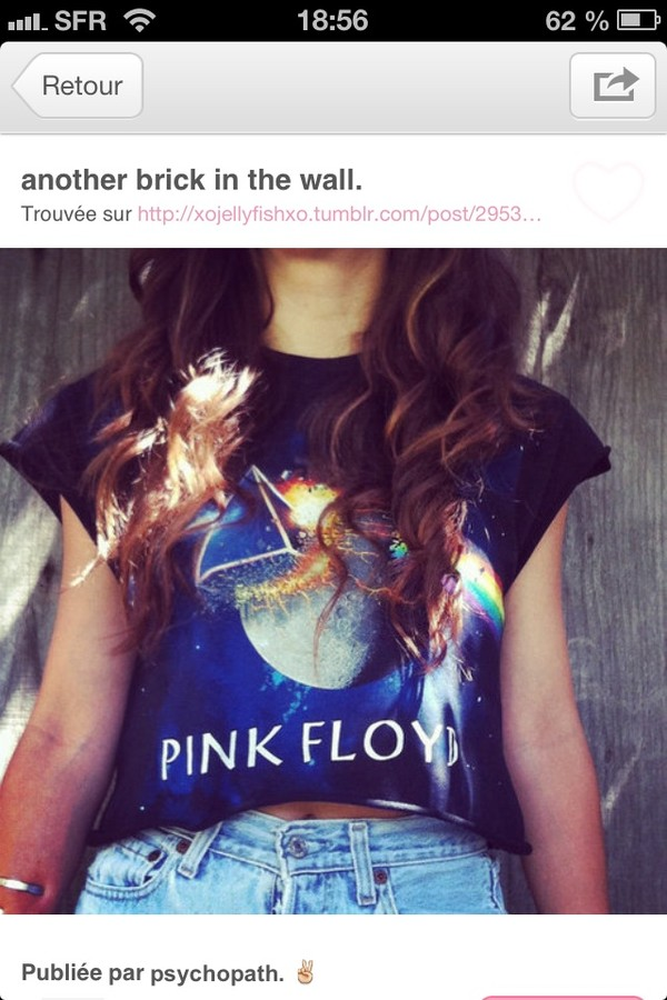 d4d56bf5148 Ladies Black Pink Floyd Dark Side Of the Moon Cropped Tee From Archive 1887  : TruffleShuffle.com