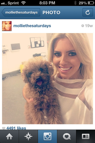 mollie king blouse zara white blouse