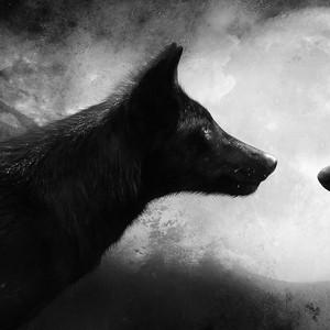 cptsuicidewolf