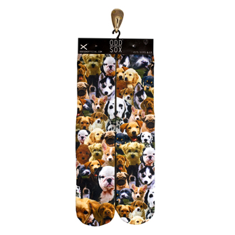 socks odd sox dog dog lovers style fashion dope trendy stand out be odd puppies pattern dope wishlist picture socks cute socks