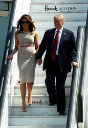 dress,first lady outfits,melania trump,midi dress,work outfits