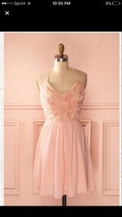 dress,pale pink dress,blush pink,roses,girly,delicate,skater dress