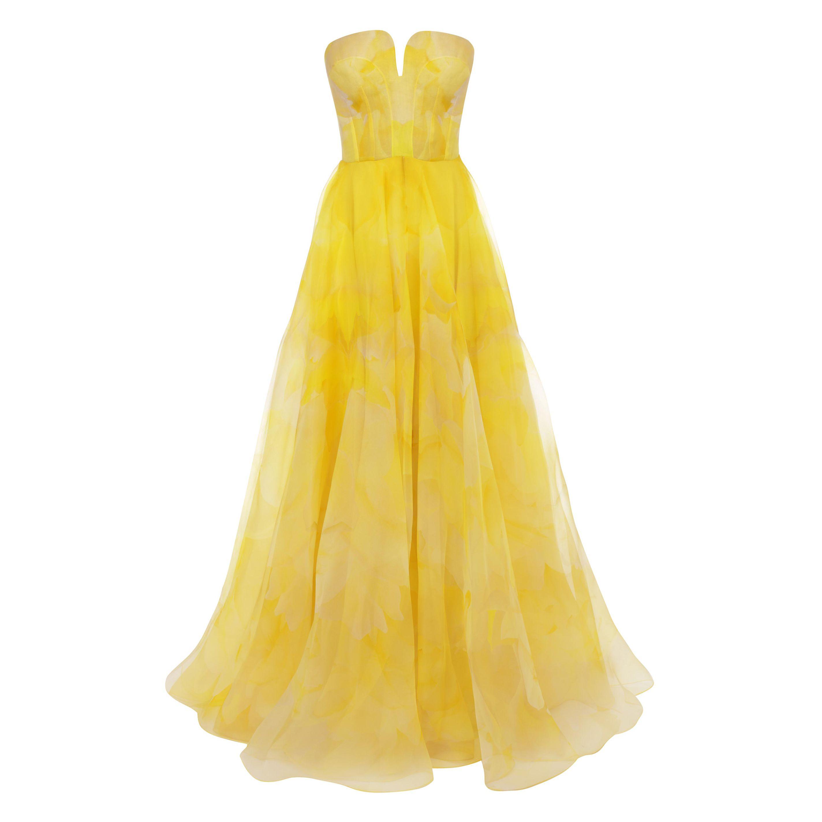 Poppy Print Organza Bustier Dress Alexander McQueen | Long Dress | Dresses |