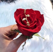 jewels,necklace,jewelry,rose,roses,gold,gold necklace,gold jewelry,rose necklace