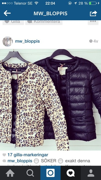 jacket black black jacket down jacket