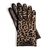 Coach :: OCELOT HAIRCALF BOW GLOVE