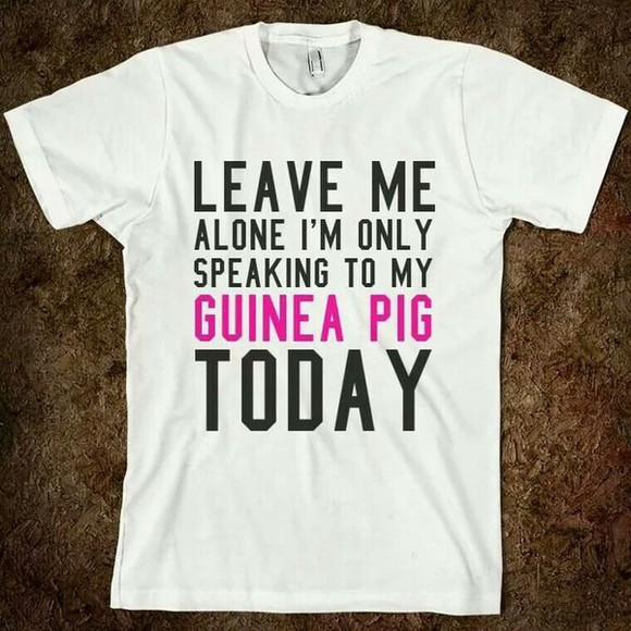 funny t-shirt quote on it guinea pig lazy day pet animal