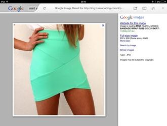 skirt mint skirt wrap skirts tube skirt