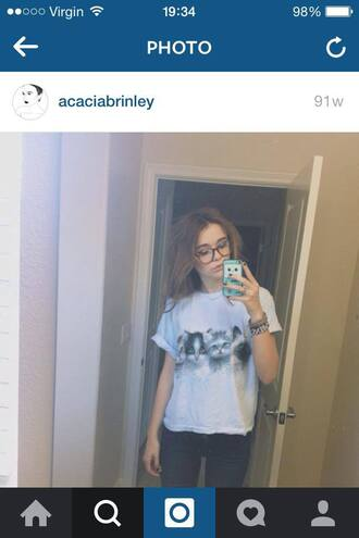acacia brinley cats white