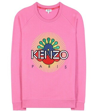 sweatshirt embroidered cotton pink sweater