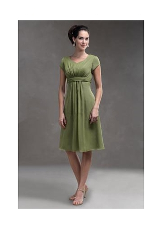 sage mother of the bride dress mint dress short sleeves chiffon dress sage short dress mother of the groom dress mint