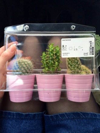 cactus cacti tumblr outfit hipster vintage black pink instagram fashion popular urban outfitters plants lifestyle
