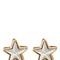Stars magnetic earrings