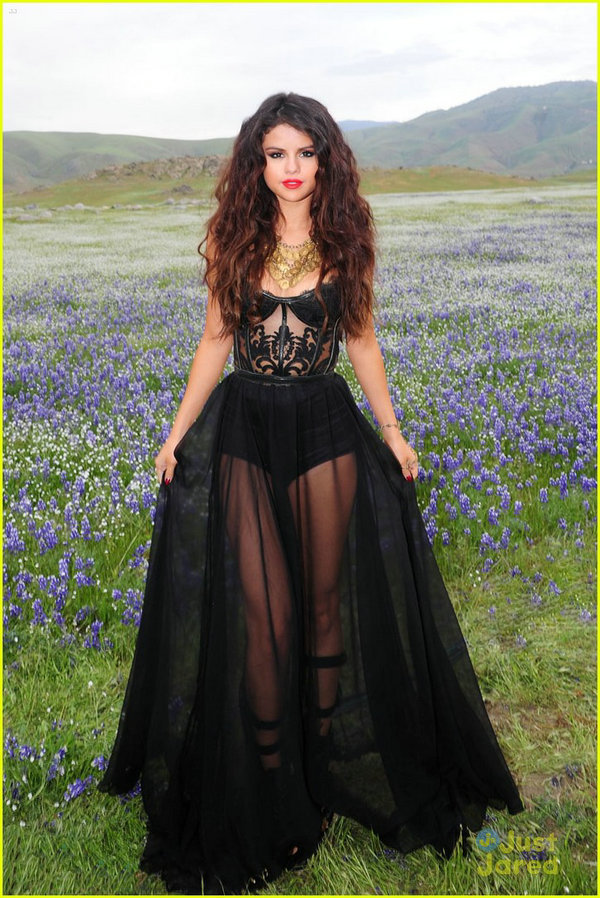 Aliexpress.com : Buy Sexy See Through Black Prom Dresses Floor Length Lace Bodice Selena Red Carpet Dress Black Celebrity Dresses from Reliable dress plants suppliers on 27 Dress