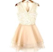 dress,vneck dress,mini dress,lace dress,sleeveless dress,organza dress,beige dress