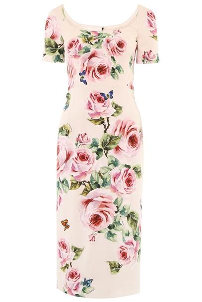 Dolce & Gabbana dress printed dress rose