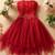 #336 Rose Flowers Dress