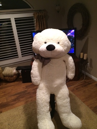 bag teddy bear teddy custom teddy bear giant bear white big soft fluffy nixon
