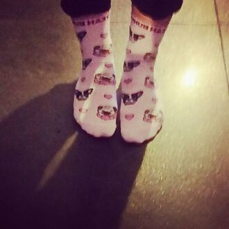 socks yeah bunny pink pastel dog print pugs frenchie frenchbulldog