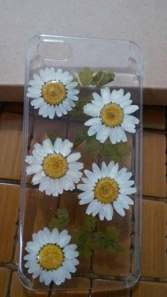 Chrysanthemum iphone 6 4.7