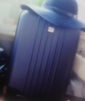 bag,bluesuitcase,carry on suitcase,suitcase,blue suitcase