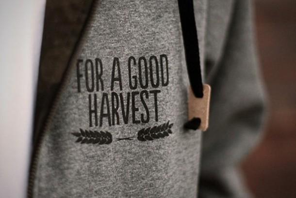 sweater hoodie harvest grey tattoo