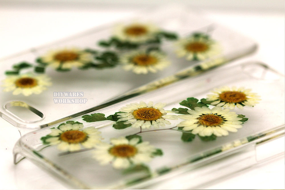 For iPhone 4 4S 5 5S 5c Cover Case Pressed Real Flower Dried White Daisies Skin | eBay