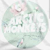 shirt,arctic monkeys,band t-shirt,pastel,top,t-shirt,floral,birds,birds shirt,birds top,white top,white t-shirt,quote on it,sea foam green,band,band merch,mint,tumblr shirt,arctic monkeys merchandise