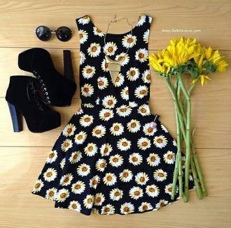 perfection short sunflower daisy hot