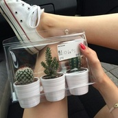 home accessory,cactus,box,white,home decor,cute,plants,ikea