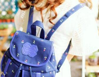 Unique Blue Canvas Backpack For Sch..
