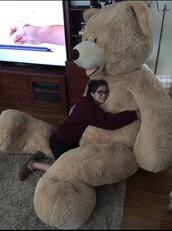 home accessory,giant,giant teddy bear,teddy bear