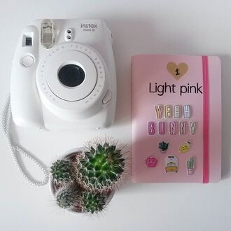 home accessory yeah bunny stickers cute stickers 3d instax pineapple cactus cacti girly