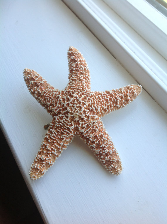 Sugar starfish mermaid hair clip by thelocalmermaid on etsy