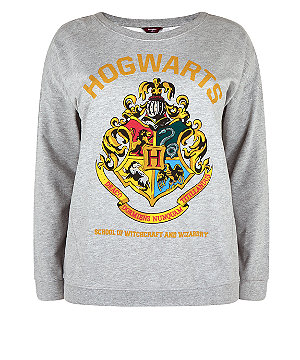 Inspire Grey Harry Potter Hogwarts Print Sweater