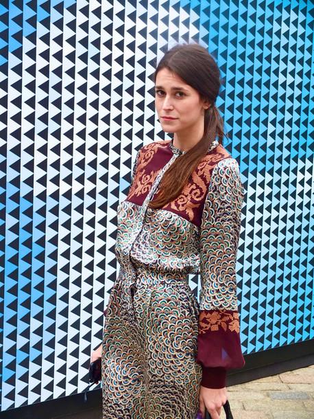 dress silk dress printed dress ornamented