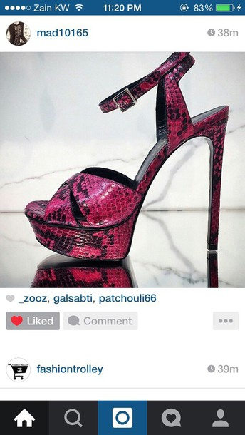 shoes snake pumps