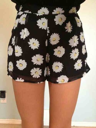 shorts flowers hipster pretty daisy
