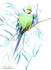 home accessory,parakeets,paper,ringed,original,and,green,birds,art,watercolor,rose,collectibles,painting,parrot