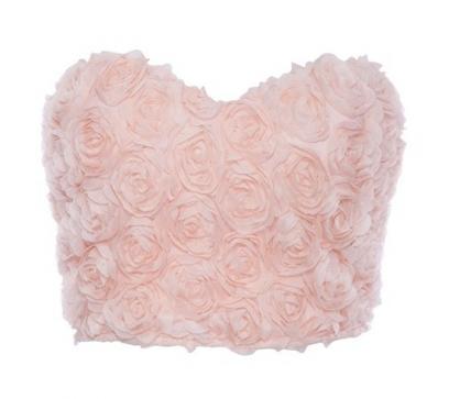 Pink Rose Mesh Bustier Crop Top | VINTAGEHORDES