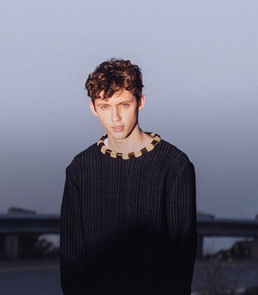 There For You Martin Garrix Troye Sivan: Sweater, There For You, Troye Sivan, Troye Sivian, Martin